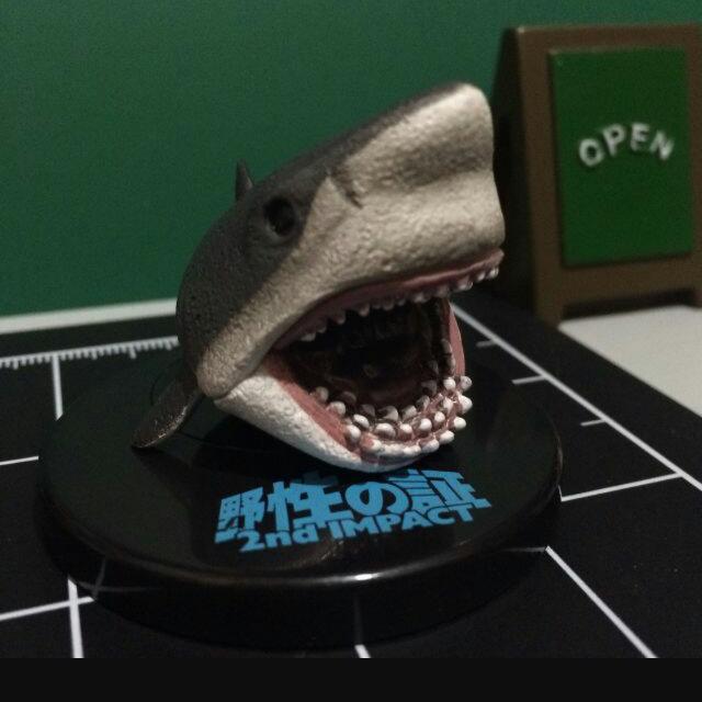 (換物)  野性的証鯊魚