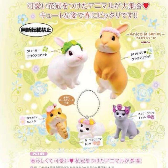 花冠動物 扭蛋 白兔 貓 扭蛋