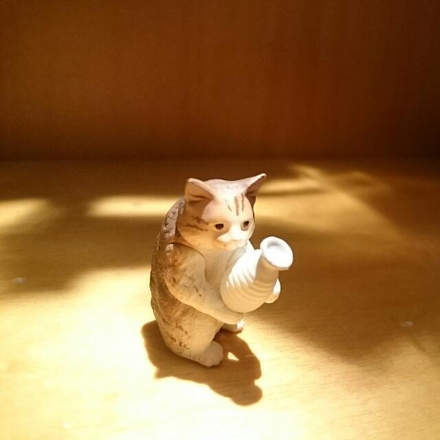 轉蛋 扭蛋 下班時間 貓咪 動物
