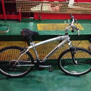 Mountain Bike (SCHWINN)