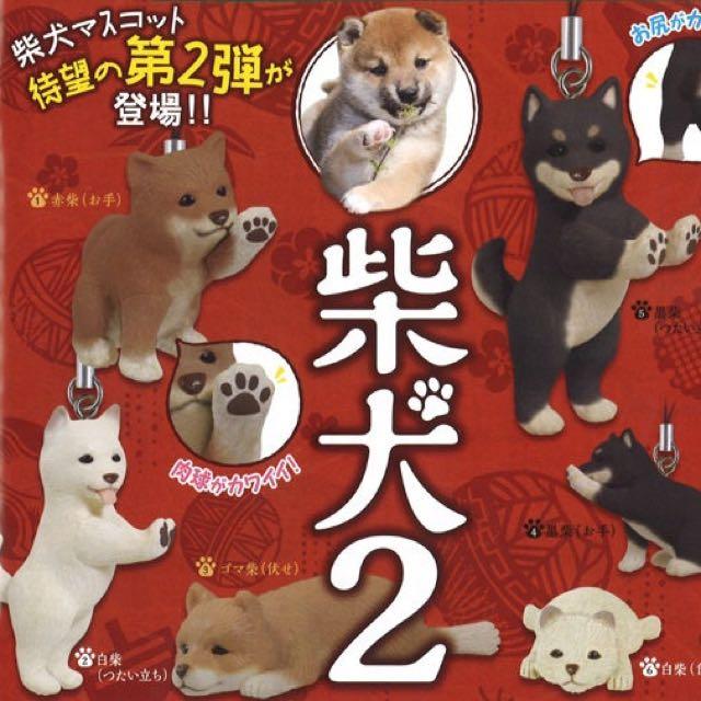 EPOCH柴犬第2彈~白色柴犬