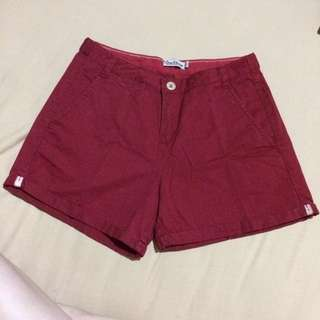 Zara TRF (Trafaluc) Collection Maroon Short