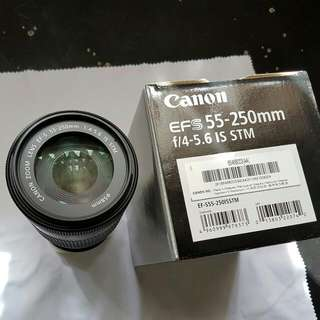 Canon EF-S 55-250mm F4 - 5.6 IS STM
