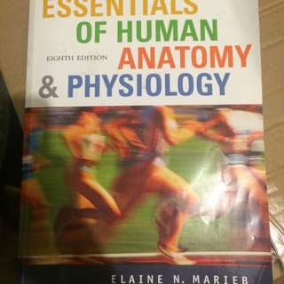 Essentials Of Human Anatomy And Physiology 8th Ed