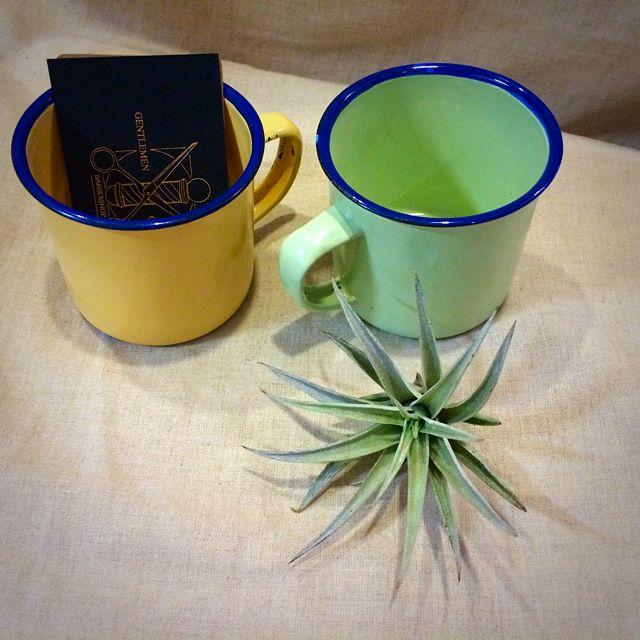珐瑯杯 空氣鳳梨的家 熱水可