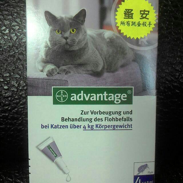 蚤安80(貓咪4kg⬆)除蚤滴劑 現貨 特價  可洗澡 大小貓皆可用