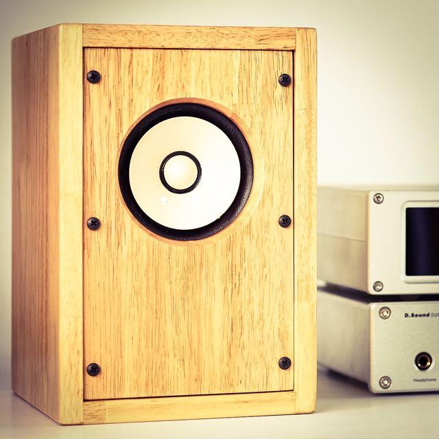 Fostex FE103En Custom Transmission Line Speaker