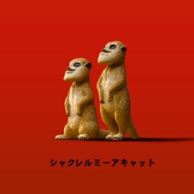 ♠ 扭蛋♠T-ARTS-厚道系列動物星球-狐獴