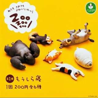 扭蛋 轉蛋 Zoo 睡眠 動物 一代 P1 驢子