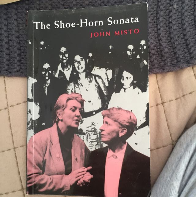 The Shore Horn Sonata By John Misto Annotated Book