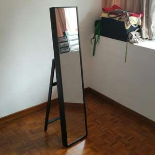 Stylish Standing Mirror For Sale!