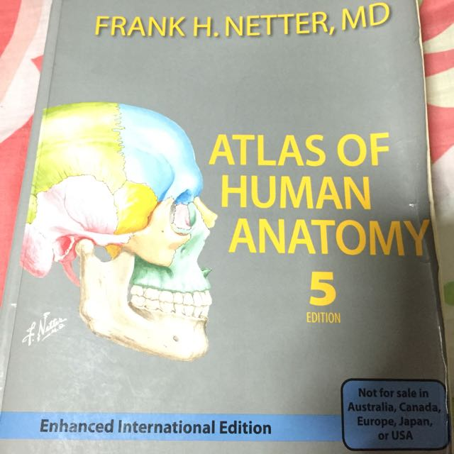 Netter Atlas Of Human Anatomy Books Stationery Textbooks On