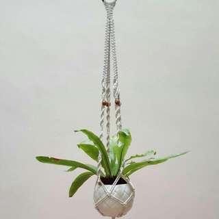 🌴🌴Handmade Macrame Pot Hanger - Perfect Mate