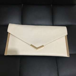 Clutch/ Side Bag