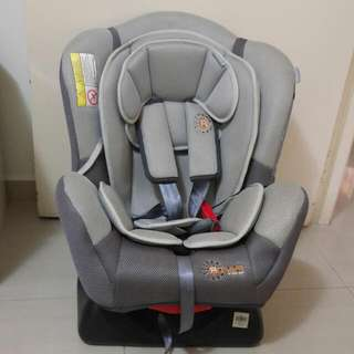 Rover Baby/Infant Car Seat