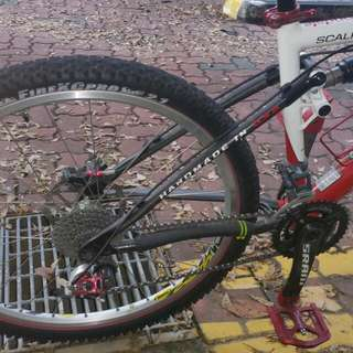 Bicycle-Cannondale Scaple