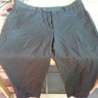 Work Pants Size 36