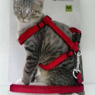 Cat Harness With Leash Cheapest In Town!!!