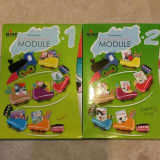 Mind  Stretcher Phonics Reading Books ELEMENTARY Module 1 and 2