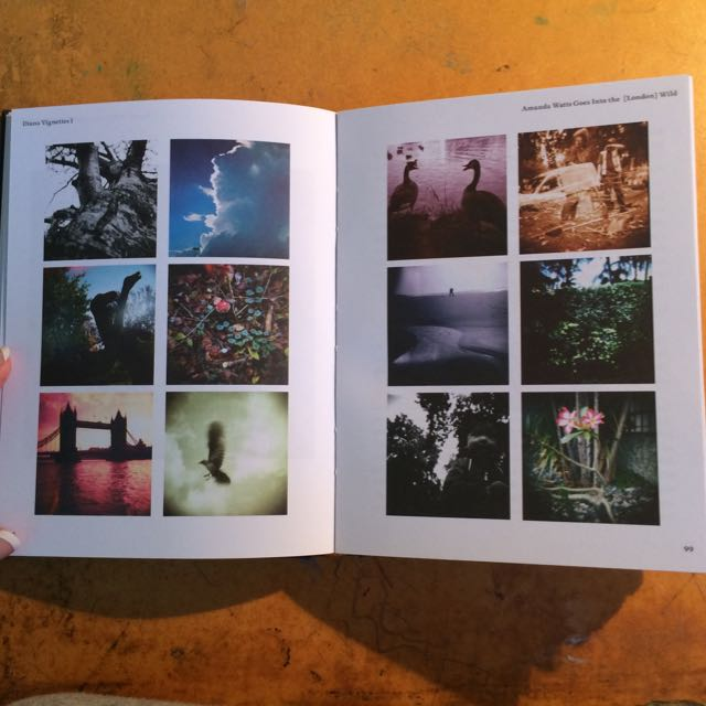 Hard Cover Diana F+ Short Stories