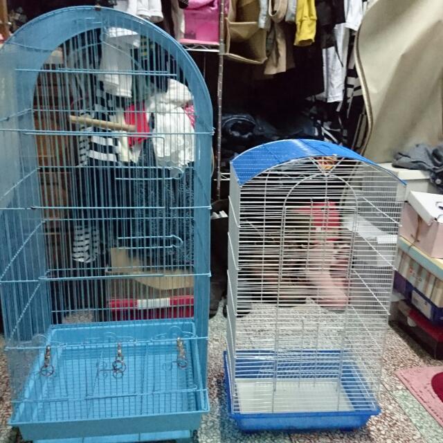 蜜袋鼯籠、鳥籠