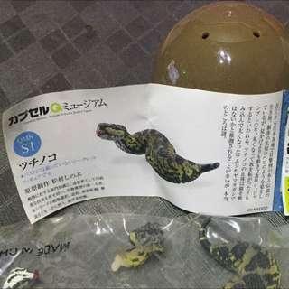海洋堂🇯🇵日本動物隱藏版-土龍