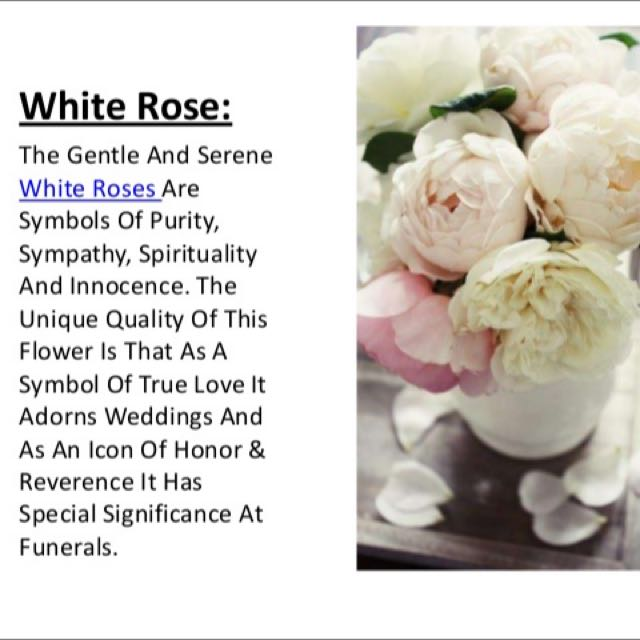 Meaning of white roses gardening on carousell mightylinksfo