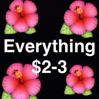 Everything $2-3