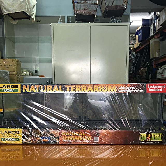 Exo Terra Large Low Terrarium Pet Supplies On Carousell