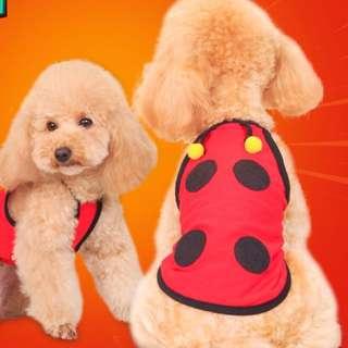 Dog Cute Shirt Ladybug