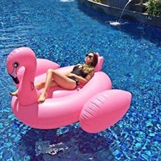 Pink Flamingo Float