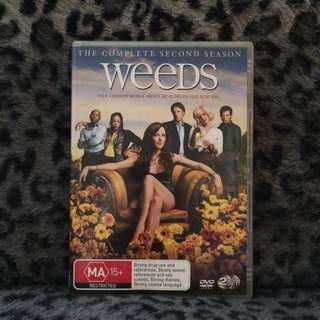 Weeds Season 2 DVD