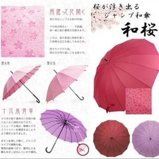 和桜傘,日本進口,自動款