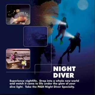 PADI NIGHT SPECIALTY DIVER COURSE  2 DAYS 2 NIGHTS TIOMAN ISLAND.