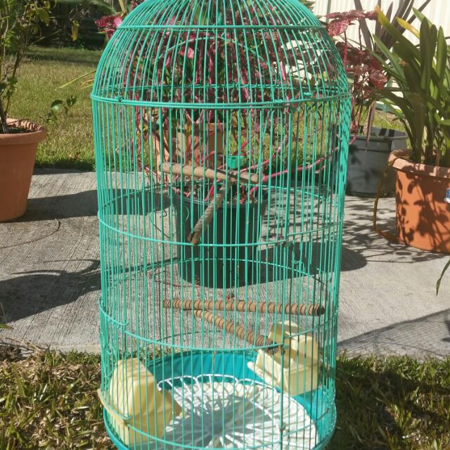 Canary Cage Still Gr8 Condition
