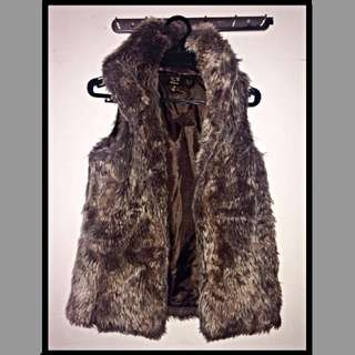 ICE Design Fur Vest XS