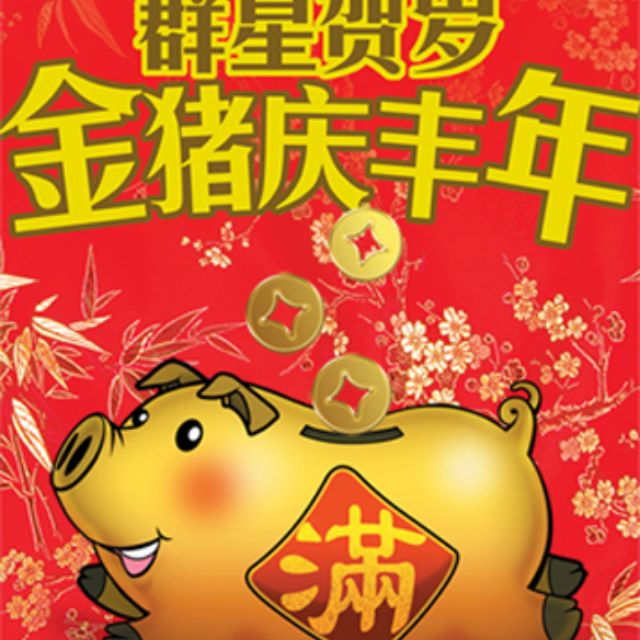 2007 MediaCorp Year of the Pig Chinese New Year Album