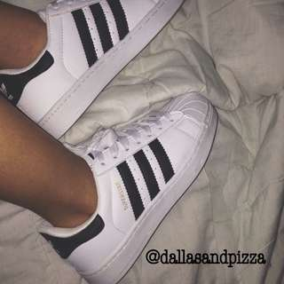 gold label Adidas superstar