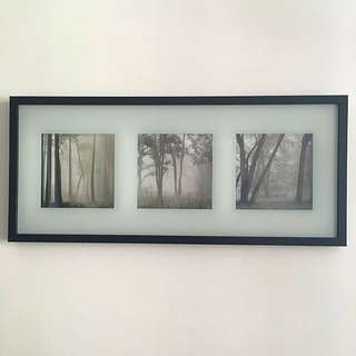 Ikea Frame With Pictures