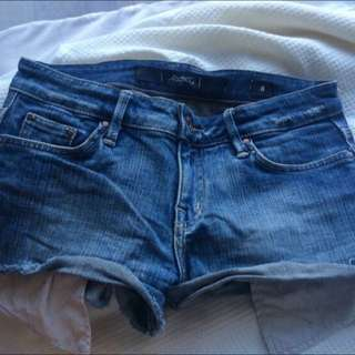 Rider Shorts Size 8