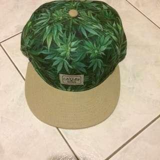 Weeds SnapBack