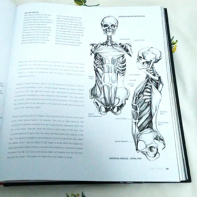 Anatomy For The Artist Sarah Simblet