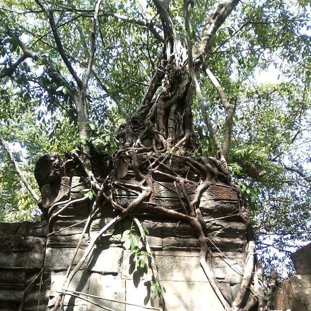 Angkor Wat Private Daily Tour Driver&Guide Service...