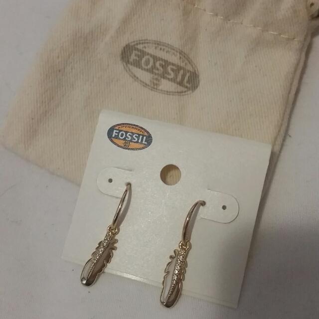 Fossil Feather Drop Earrings
