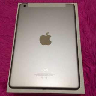 Ipad Mini1 16gb Wifi 4g Sim