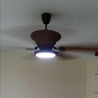Fanhub Laurestine Ceiling Fan