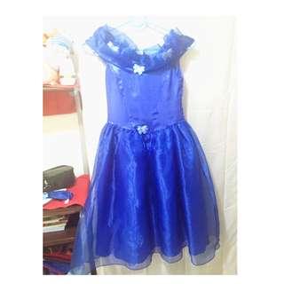 Cinderella  And Frozen Gown
