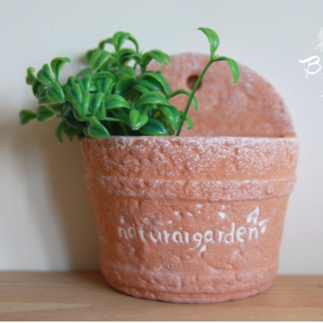 粗陶可壁掛紅土小花盆 多肉植物/花園盆栽