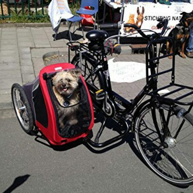 Bicycle Trailer / Sidecar / Pet Carrier on Carousell