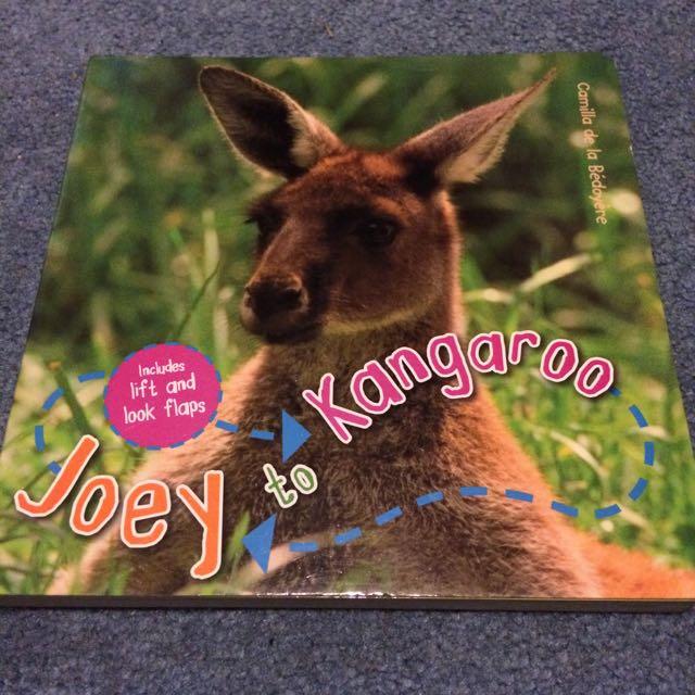Kangaroo Book